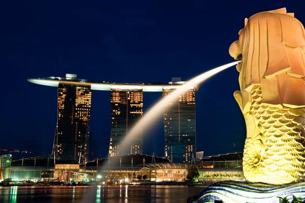 新加坡花場/新加坡吊花/花場小姐