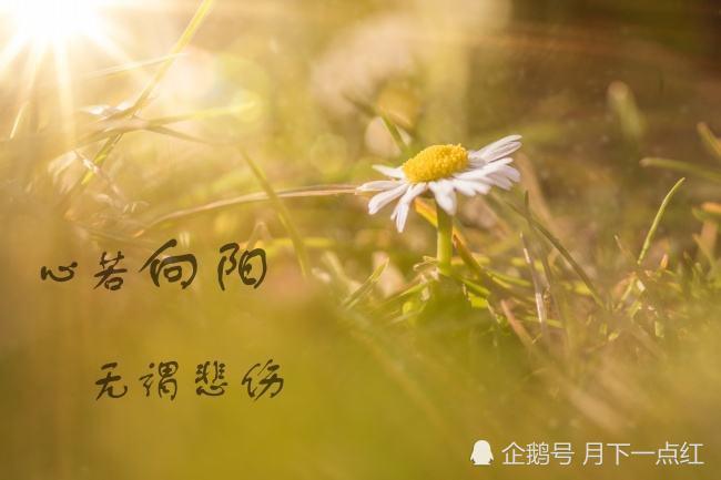 情感天地:人生苦短,何必在乎太多,苦給自己聽笑給别人看,這就是人生 …