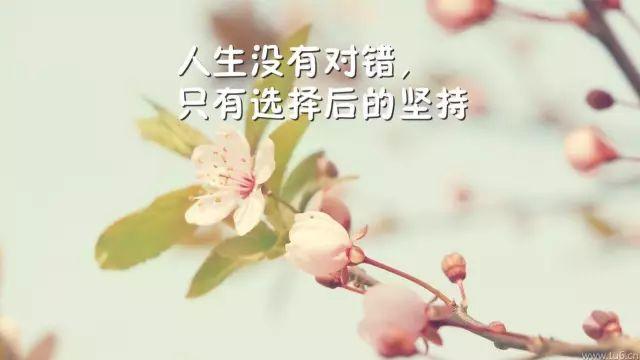 励志的名言,暖人心田,激励人生